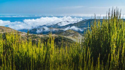 Madeira: Mar, naturaleza y otros secretos por descubrir