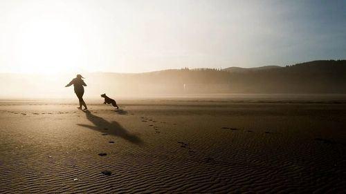 Verano y playas caninas: Descubrimos los destinos más económicos