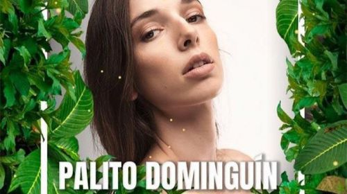 Palito Dominguín a 'Supervivientes'