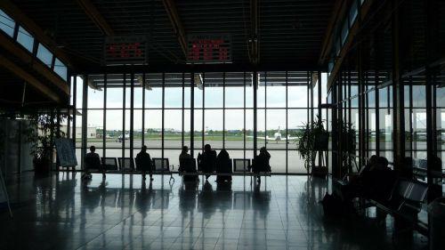 8 de cada 10 viajeros nacionales buscarán mayor variedad de aerolíneas en sus viajes post pandemia